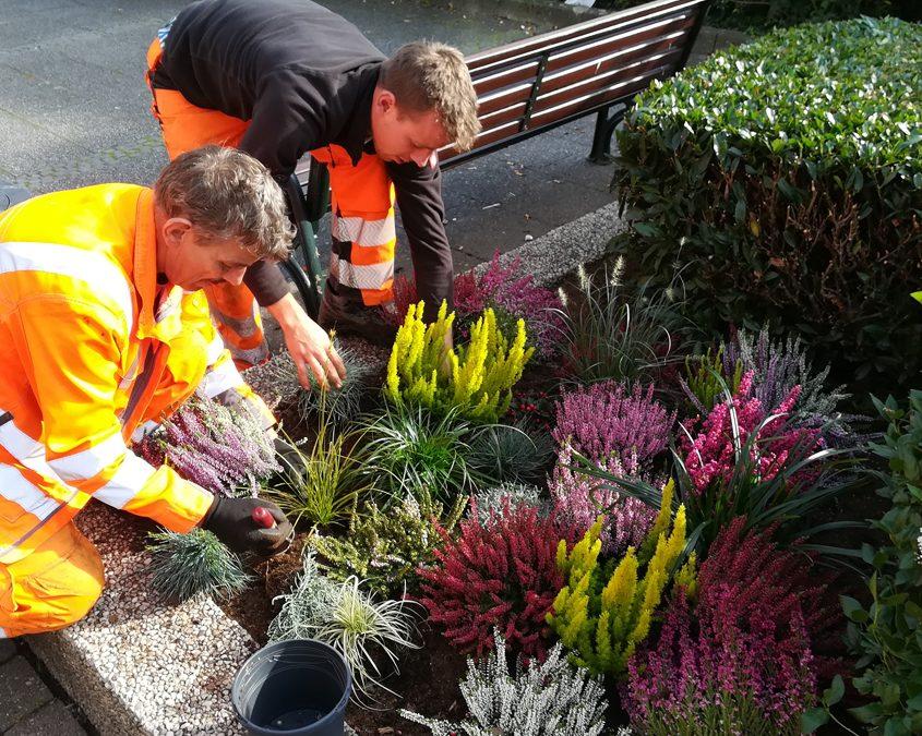 Farbenfrohe Bepflanzung in Kevelaers Blumenbeeten