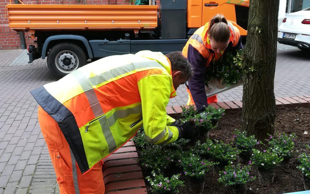 """Erneute Sponsorenbeteiligung bei der Aktion """"Kevelaer blüht auf"""":  Farbenfrohe  Blumenbeete zum Wallfahrtsbeginn"""