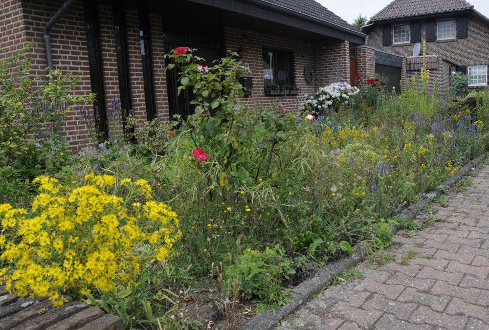 Kevelaers insektenfreundlichste Vorgärten gekürt Es gibt nur Gewinner